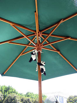 Up up we go. Pandas Under the Umbrella. by Ausra Huntington nee Paulauskaite