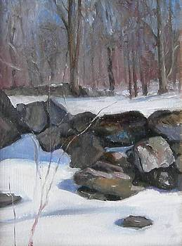 Upper Field in Snow by Donna Pomponio Theis