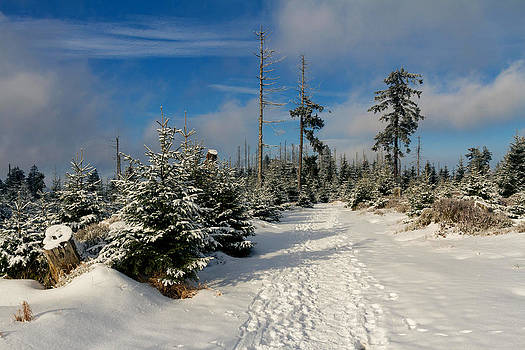 Upper Harz by Andreas Levi