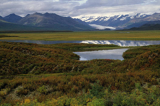 Harold E McCray - Upper Nenana River - Alaska