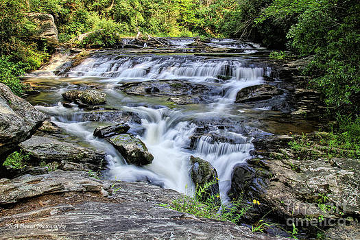 Barbara Bowen - Upper Panther Creek Falls