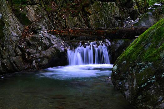 Upper Preston Brook Falls Vermont by Wendell Ducharme Jr