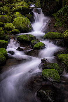 Upper Ruckel Creek by Brian Bonham