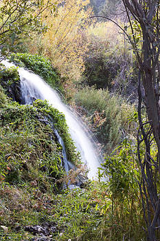 Upper Warm Spring Falls by Dana Moyer