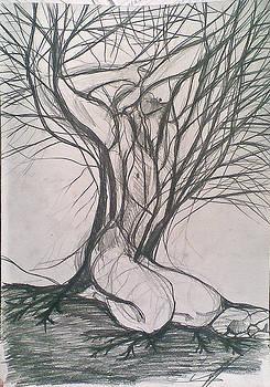 Uprooting 2 by Vaidos Mihai