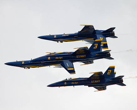 Upside Down Blue Angels by Jose Oquendo