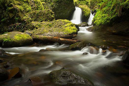 Upstream by Anthony J Wright