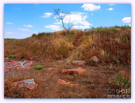 Upward Trail by Mickey Harkins