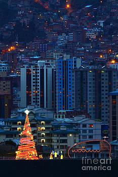 James Brunker - Urban Christmas Tree