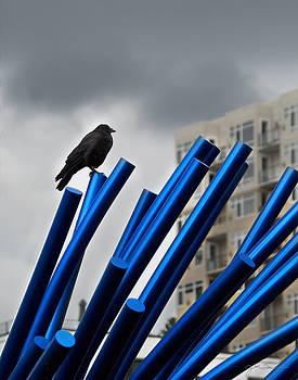 Julie Magers Soulen - Urban Crow