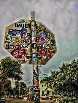 Urban Decay by Kristy Ollis