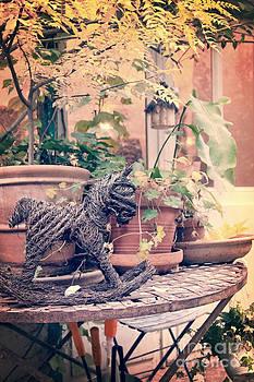 Delphimages Photo Creations - Urban garden
