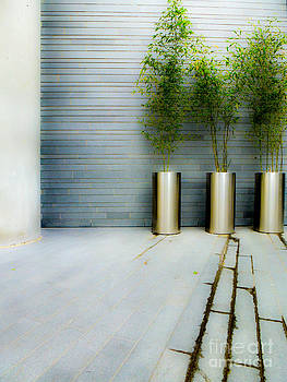 Urban Planters by Nancy Harrison