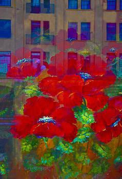 Urban Poppies  by Carolyn Marchetti