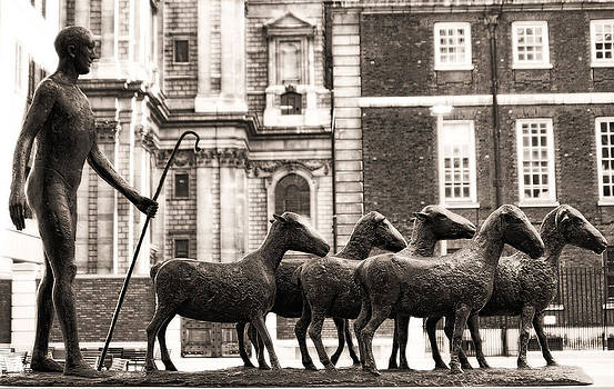 Urban Shepherd 2 by Joanna Madloch