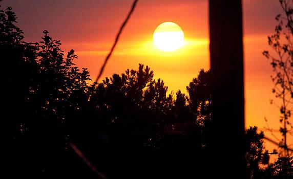 Urban Sunset by Elizabeth Richardson