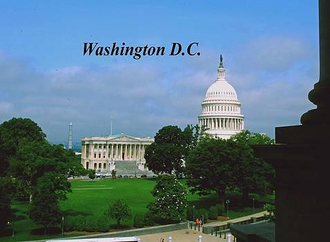 Gary Wonning - U.S. Capitol