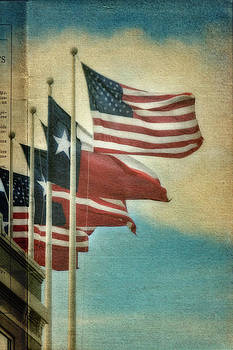 USA and Texas vintage by Joan Bertucci