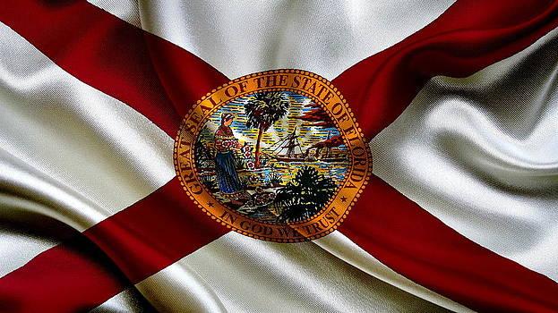 Valdecy RL - USA Florida Flag