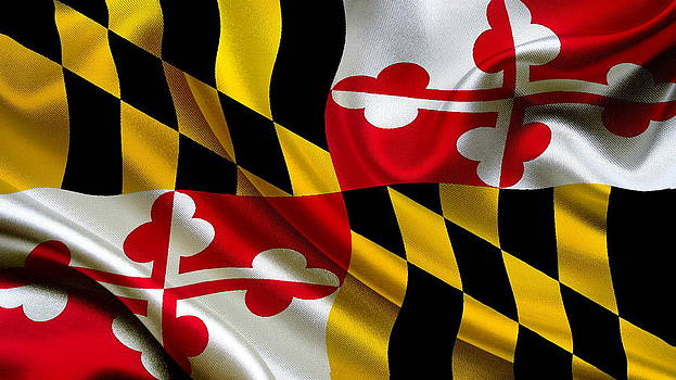 Valdecy RL - USA Maryland Flag