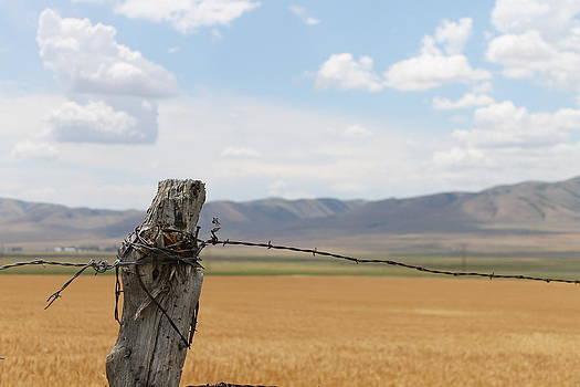 Utah landscape by Peter Kotzbach