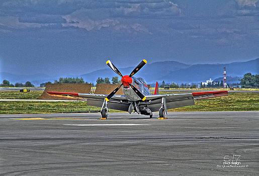 Val Halla P-51 by Dan Quam
