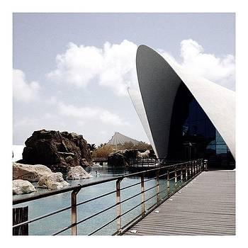 #valencia #spain #calatrava #tbt by Angelica Chico