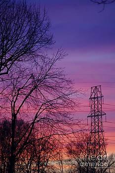 Tannis  Baldwin - Valentine Day Sunset B