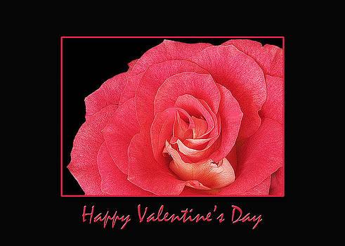 Valentine's Day by Mariola Szeliga