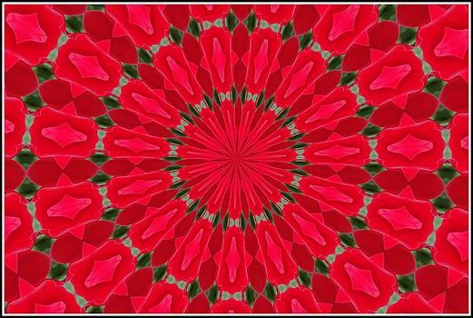 Valentines Dublin Bay Rose Mandala by Chris Keenan