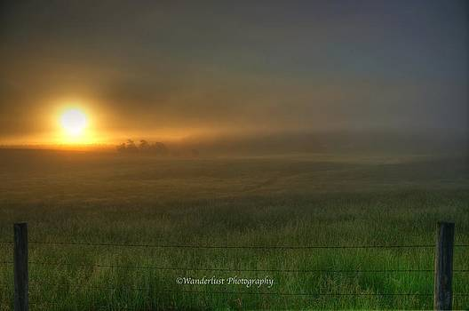 Valley Fog by Paul Herrmann