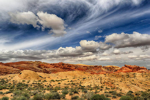 Valley of Fire 1 by Lisa Kidd