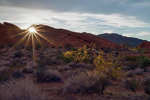 Valley of Fire starburst by Gary  Drinkhorn