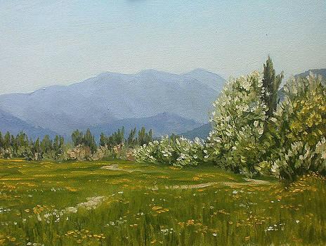 Valley Of The Salgir by Yaroslav Kuvshinov