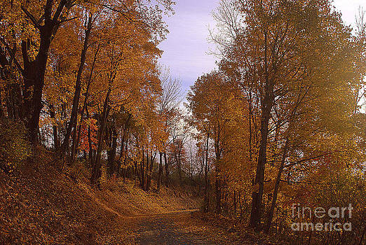 Valley Road Gold by M Hess