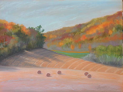 Valley View by Sherri Anderson
