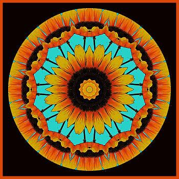 Van Gogh Inspired Kaleidoscope by Liz Mackney