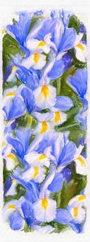 Van Gogh's Iris by Angela Stanton