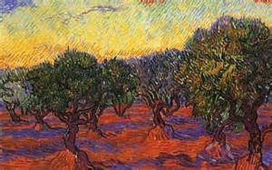 Van Gogh's Olive Grove by Susan Hanning