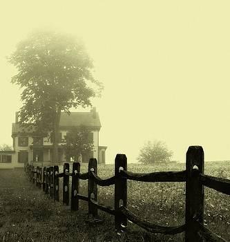 Van Liew-Suydam House by Kim Zier