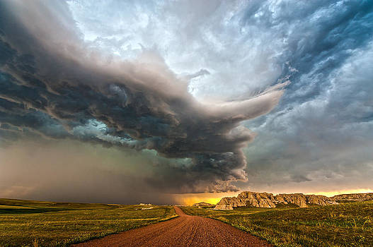 Van Tassel Wyoming by Colt Forney
