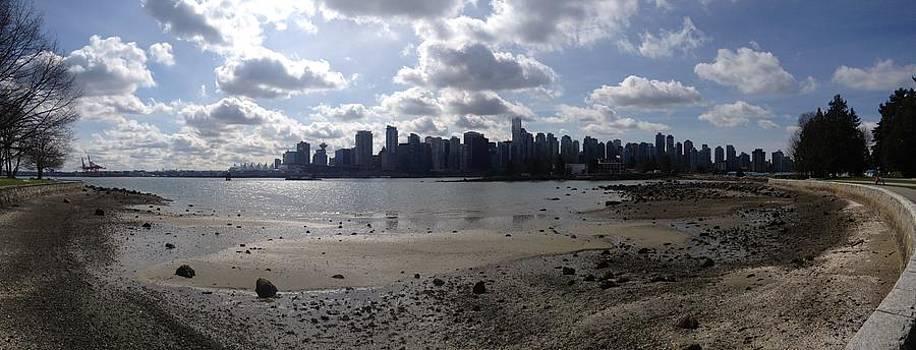 Nicki Bennett - Vancouver Harbor View