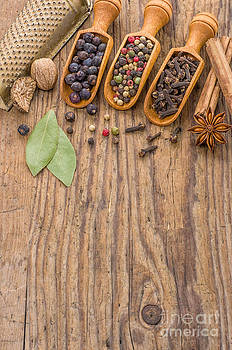 Various spices in wooden scoops by Palatia Photo