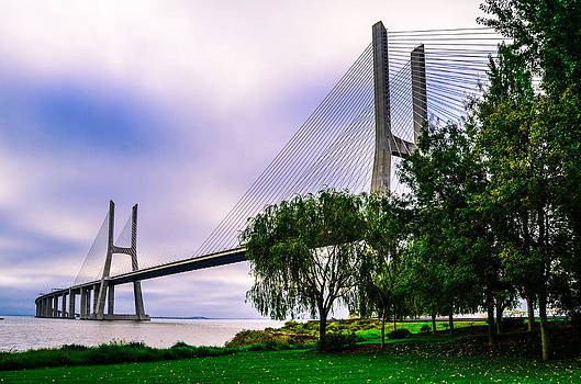 Alexandre Martins - Vasco da Gama Bridge I