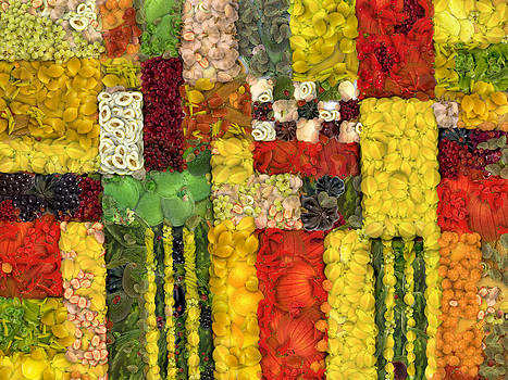 Michelle Calkins - Vegetable Abstract