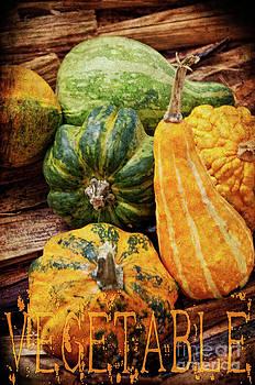 Angela Doelling AD DESIGN Photo and PhotoArt - Vegetable