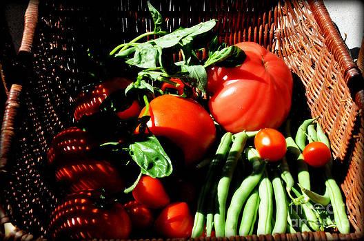 Vegetable Basket by Tanya  Searcy