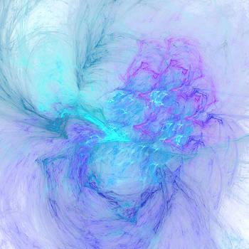 Veil by David Cowan