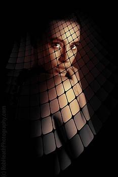 Veil Of Intrigue by Rob Heath