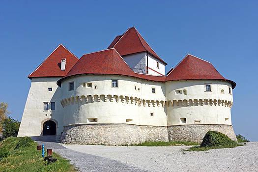 Veliki Tabor castle by Borislav Marinic